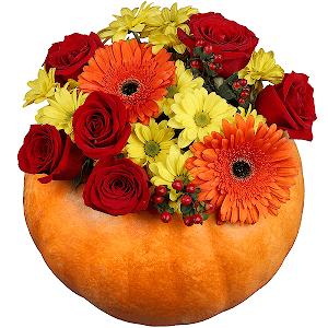 Цветы живые доставка цветов в г стерлитамак цветы